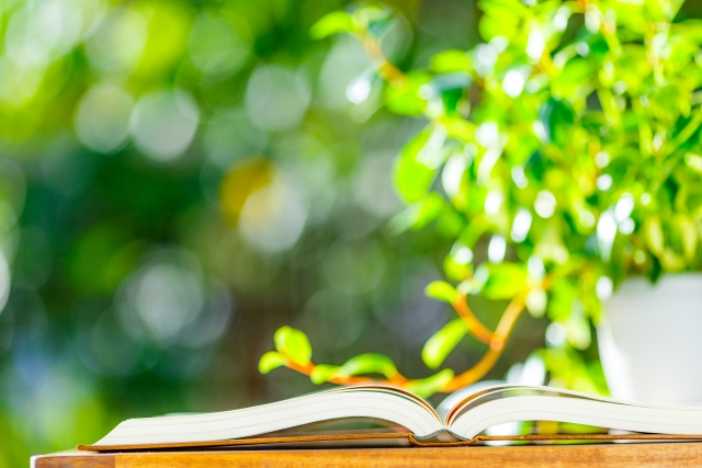 green_and_book