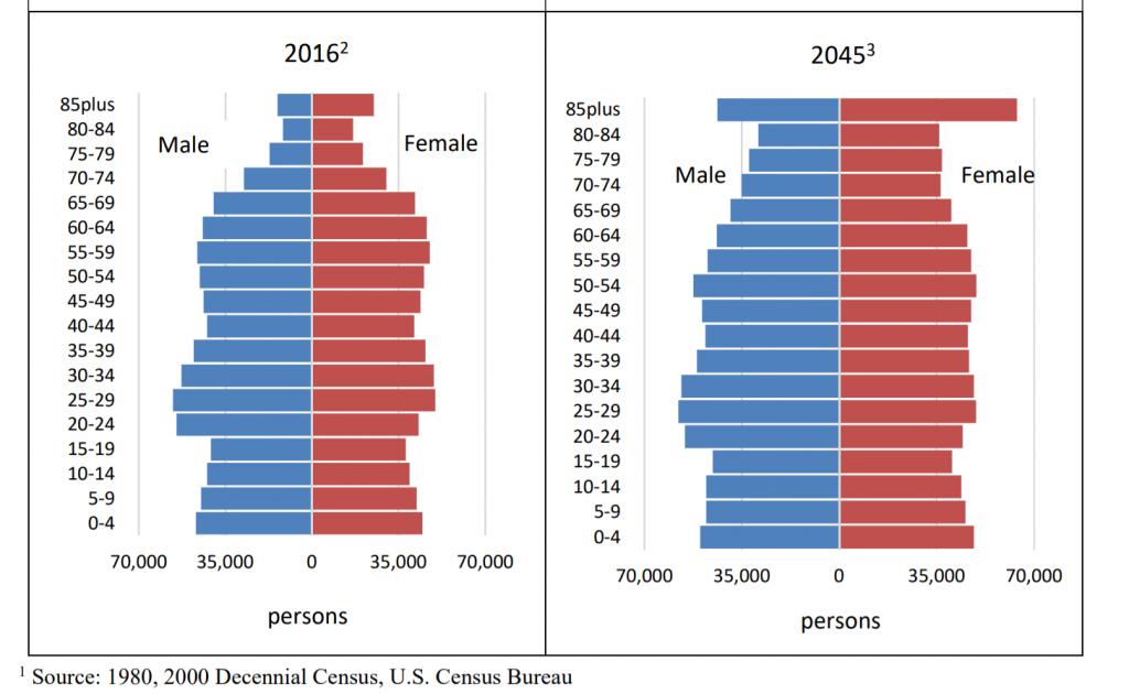 ハワイ州年齢別人口デモグラフィック